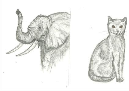animaux 2