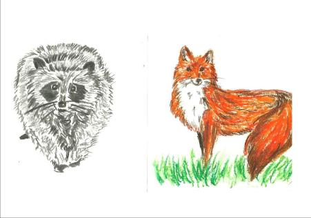 animaux 5